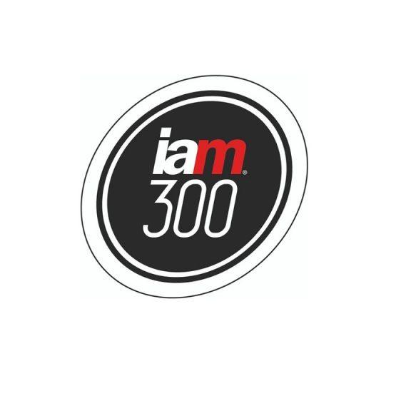 IAM 300 image